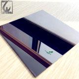 Schwarze Oberflächen-dekorativer Edelstahl überzieht des Ti-201 Blatt