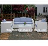 Jogo de vime do sofá da mobília ao ar livre do Rattan do jardim