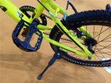 """Cor da luz de bicicletas BMX OEM de boa qualidade, 20"""" nova Freestyle Bike"""