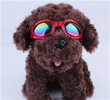 Het recentste Hete Verkopen! ! De Glazen van de Hond van het huisdier, de Toebehoren van de Hond, de Toebehoren van het Huisdier
