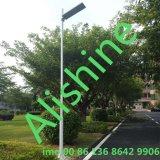 Luz de calle solar toda junta de la venta 25 W LED de la fábrica del LED con el mono panel solar