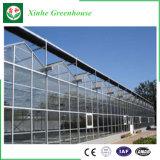 De commerciële Serre van het Glas met het Systeem van de Controle van het Klimaat
