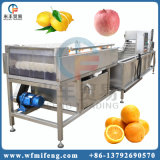 자동적인 지속적인 과일 세탁기 오이 세탁기 야채 세탁기