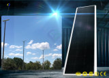 Ce/RoHS/ISO를 가진 태양 강화된 IP65 한세트 LED 태양 가로등