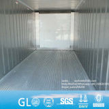 Cimc Singamas 20FT & 40FT Reefer & transporteur de conteneurs isolés de la mer de l'unité de réfrigération Conteneur Conteneur frigorifique
