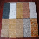 Panneau de revêtement pour les murs extérieurs/panneau de mur décoratif extérieur