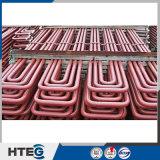 China Supplier 10 # Chaudière à vapeur d'acier Superheater Doublé Tubes