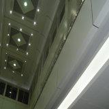 De moderne Hyperbolische Comités van het Aluminium voor de Decoratie van het Plafond