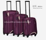 نوعية 4 عجلات دحرج [ترولّي] حقيبة سفر [بغ كس] ([س3404])