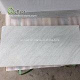 Wit Geslepen Zandsteen 30X60X2cm van de Tegel van de Steen van de Kleur