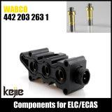 Bobine de solénoïde Wabco 4422032631 pour le dessiccateur d'air d'ECAS de camion