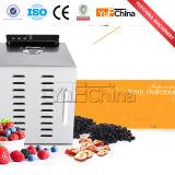 Desidratador ajustável das frutas com sistema da circulação de ar quente