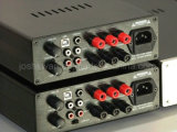 Amplificatore di alta fedeltà di G33D 300W DSP+SMPS+Class D
