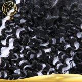 加工されていないインドのバージンの毛の巻き毛の波の毛のレースの閉鎖