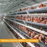 Горячие продавая клетки цыплятины слоя рамки автоматические в Нигерии