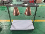Lâmpada de aquecimento de HCl-2 2head (com termostato)
