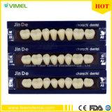 dentes sintéticos dentais da resina dos dentes do polímero 2-Layer