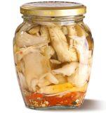 Fungo inscatolato altamente squisito della miscela in salsa