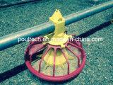 Sistema di innalzamento della pavimentazione del pollo dell'azienda avicola piccolo