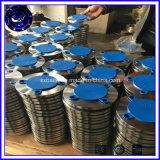 Forgia della flangia dell'acciaio inossidabile A182 SS304 SS316