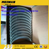Rolamento da Biela nova 4W5739 para motor Shangchai