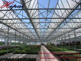 Serra intelligente della multi serra di vetro della portata grande