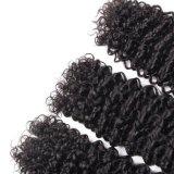 Qualitätsbrasilianisches Haar, das tiefes lockiges Schwarzes der Farben-22inches spinnt