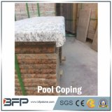 Granite Swimming Pool Coping Tiles para Garden Houses G443 Spray White