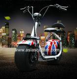 scooter électrique adulte de batterie au lithium de 1000W 48V 12ah