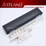 16 agujeros cerrados plateado estándar flauta (AFL5506)