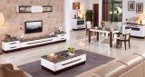 大理石の上のヨーロッパのホーム家具のコーヒーテーブル(CJ-2028)