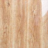 Baumaterial-Marmor-Exemplar-voll glasig-glänzende Porzellan-Fußboden-Fliese (SD6001)