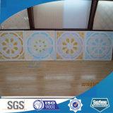 Telhas decorativas acústicas do teto da gipsita de Grg