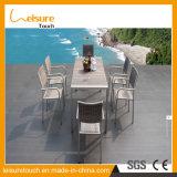粉の豪華で新しいデザイン屋外の庭の家具のダイニングテーブルそして椅子フレームはアルミニウムダイニングテーブルセットに塗った