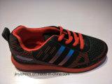 Meer Schoenen van /Leisure van de Schoenen van de Sport van de Kleur/Schoenen van de Manier