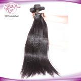 Волосы путать волос девственницы свободно шелковистые прямые малайзийские