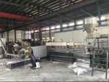Производственная линия зерна 2 этапов пластичная для заполнять Masterbatch
