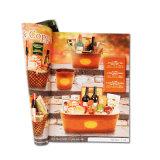 Stampa su ordinazione del catalogo di alta qualità di vendita calda per l'accumulazione dei prodotti