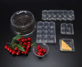 De duidelijke die Fabriek van de Doos van het HUISDIER van het Voedsel in China (voedseldienblad) wordt gemaakt