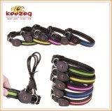 Padrão recarregável de /Environmental dos colares de cão do animal de estimação do diodo emissor de luz do USB (KC0087)