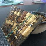 La glace Tempered personnalisée/a teinté le verre feuilleté/glace de flotteur stratifiée pour la décoration