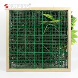 훈장을%s 높은 시뮬레이트한 지구 친절한 신선한 PE 녹색 벽 예술