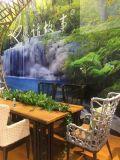 Cena al aire libre y conjunto seccional de los muebles de la rota del patio del sofá
