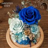Flor verdadera del 100% Rose para el regalo de cumpleaños de la tarjeta del día de San Valentín