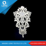 China larva Collar Lace for Garment Use