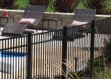 Загородка свободно порошка обслуживания Coated орнаментальная для сада, палубы и бассеина