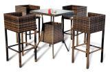 Presidenza esterna di svago della mobilia del rattan e Table-2