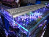 Iluminación marina coralina del acuario del crecimiento LED del filón