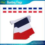Baratos nacional de poliéster banderas Bunting (B-NF11F06020)