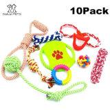 Haustier-Trainings-Kugel-Spielzeug-multi Farbe und langlebiges Gut mit verschiedenen Sätzen